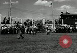 Image of Horse Rodeo Calgary Canada, 1949, second 4 stock footage video 65675069319