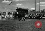 Image of Horse Rodeo Calgary Canada, 1949, second 11 stock footage video 65675069319