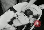 Image of baby gorilla Anacortes Washington USA, 1951, second 8 stock footage video 65675069469