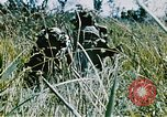 Image of jungle combat with machine guns Vietnam, 1967, second 4 stock footage video 65675069514