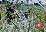 Image of jungle combat with machine guns Vietnam, 1967, second 6 stock footage video 65675069514
