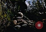 Image of jungle combat with machine guns Vietnam, 1967, second 7 stock footage video 65675069514