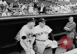 Image of New York Yankees vs Boston Red Sox Boston Massachusetts USA, 1957, second 8 stock footage video 65675069551