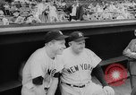 Image of Mickey Mantle and Ted Williams compete for batting title New York City USA, 1957, second 7 stock footage video 65675069559