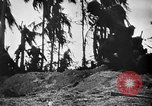 Image of United States Marines Palau Islands, 1944, second 7 stock footage video 65675069632