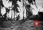 Image of United States Marines Palau Islands, 1944, second 8 stock footage video 65675069632