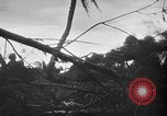 Image of United States Marines Palau Islands, 1944, second 9 stock footage video 65675069632