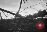 Image of United States Marines Palau Islands, 1944, second 10 stock footage video 65675069632