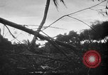 Image of United States Marines Palau Islands, 1944, second 11 stock footage video 65675069632