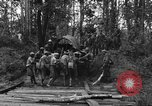 Image of Karen troops Chaungtha Burma, 1944, second 4 stock footage video 65675069659