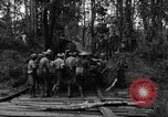 Image of Karen troops Chaungtha Burma, 1944, second 10 stock footage video 65675069659