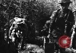Image of British troops Burma, 1945, second 4 stock footage video 65675069663
