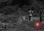 Image of 19th Infantry Division Burma, 1945, second 6 stock footage video 65675069666