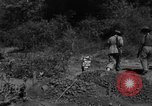 Image of 19th Infantry Division Burma, 1945, second 7 stock footage video 65675069666