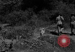 Image of 19th Infantry Division Burma, 1945, second 8 stock footage video 65675069666