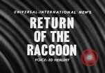 Image of raccoon coats United States USA, 1957, second 2 stock footage video 65675069673