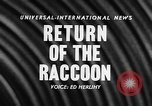 Image of raccoon coats United States USA, 1957, second 5 stock footage video 65675069673