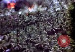 Image of United States air strike Vietnam, 1968, second 12 stock footage video 65675069678