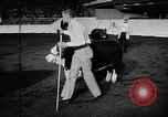 Image of Live-Stock show Chicago Illinois USA, 1957, second 5 stock footage video 65675069758