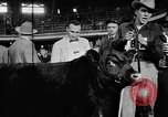 Image of Live-Stock show Chicago Illinois USA, 1957, second 10 stock footage video 65675069758