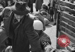 Image of Italian refugees Naples Italy, 1944, second 5 stock footage video 65675069802