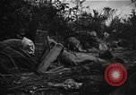 Image of Battle of Okinawa Okinawa Ryukyu Islands, 1945, second 5 stock footage video 65675069877