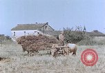 Image of army camp Corsica France, 1944, second 11 stock footage video 65675070020