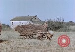 Image of army camp Corsica France, 1944, second 12 stock footage video 65675070020