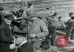 Image of United States soldiers Cherbourg Normandy France, 1944, second 8 stock footage video 65675070144