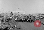 Image of Korean prisoners Seoul Korea, 1954, second 11 stock footage video 65675070187
