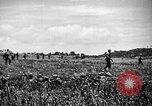 Image of United States Marines Okinawa Ryukyu Islands, 1945, second 10 stock footage video 65675070215