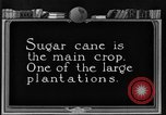 Image of sugarcane farm Hawaii USA, 1924, second 2 stock footage video 65675070223