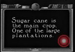 Image of sugarcane farm Hawaii USA, 1924, second 4 stock footage video 65675070223