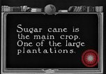 Image of sugarcane farm Hawaii USA, 1924, second 6 stock footage video 65675070223