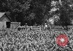 Image of tractor-drawn wagon United States USA, 1919, second 4 stock footage video 65675070231