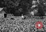 Image of tractor-drawn wagon United States USA, 1919, second 6 stock footage video 65675070231