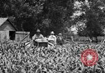 Image of tractor-drawn wagon United States USA, 1919, second 10 stock footage video 65675070231