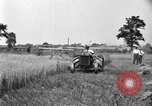 Image of tractor-drawn binder United States USA, 1919, second 3 stock footage video 65675070232