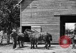 Image of horse-drawn binder United States USA, 1919, second 3 stock footage video 65675070233