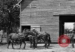 Image of horse-drawn binder United States USA, 1919, second 6 stock footage video 65675070233