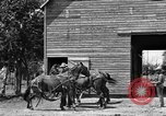 Image of horse-drawn binder United States USA, 1919, second 7 stock footage video 65675070233