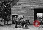 Image of horse-drawn binder United States USA, 1919, second 8 stock footage video 65675070233