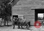 Image of horse-drawn binder United States USA, 1919, second 9 stock footage video 65675070233