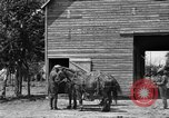 Image of horse-drawn binder United States USA, 1919, second 10 stock footage video 65675070233