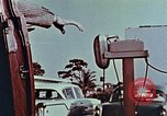 Image of Drive-in church Florida United States USA, 1958, second 7 stock footage video 65675070282