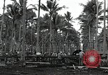 Image of construction work Espiritu Santo Vanuatu, 1943, second 1 stock footage video 65675070359
