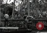 Image of construction work Espiritu Santo Vanuatu, 1943, second 8 stock footage video 65675070359
