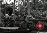 Image of construction work Espiritu Santo Vanuatu, 1943, second 9 stock footage video 65675070359
