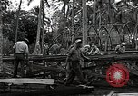 Image of construction work Espiritu Santo Vanuatu, 1943, second 10 stock footage video 65675070359
