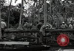 Image of construction work Espiritu Santo Vanuatu, 1943, second 12 stock footage video 65675070359